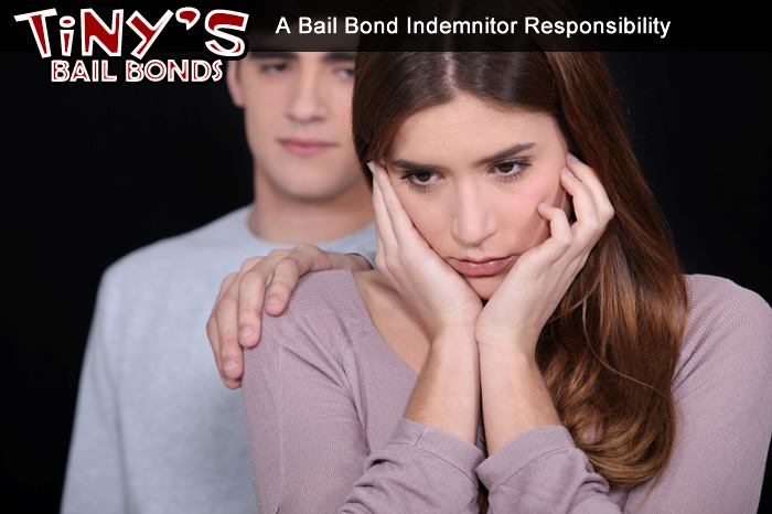 A Bail Bond Indemnitor's / Guarantor's Responsibility